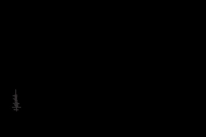 Illustration de Diane Commerford et Denis Cadieux - fondateurs de Tendances Concept